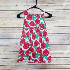 Vineyard Vines Kentucky Derby Dress Size 5